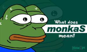 What Does monkaS Mean?