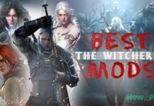 Witcher 3 Mods